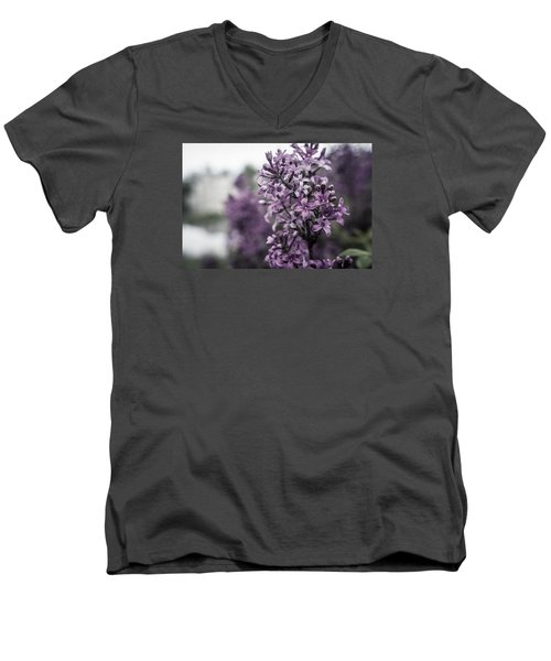 Gentle Spring Breeze Men's V-Neck T-Shirt by Miguel Winterpacht