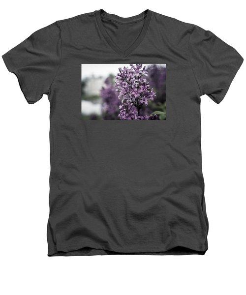 Gentle Spring Breeze Men's V-Neck T-Shirt
