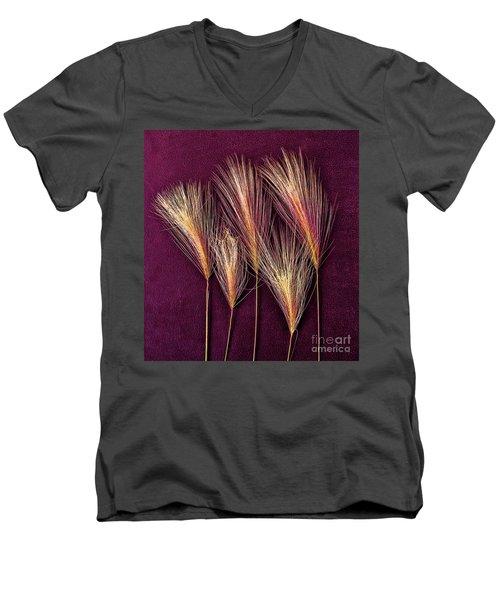 Gently Men's V-Neck T-Shirt