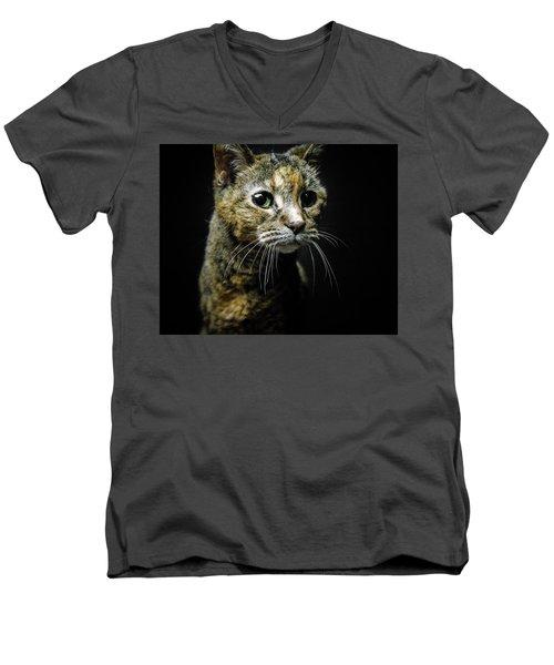 Geraldine Men's V-Neck T-Shirt