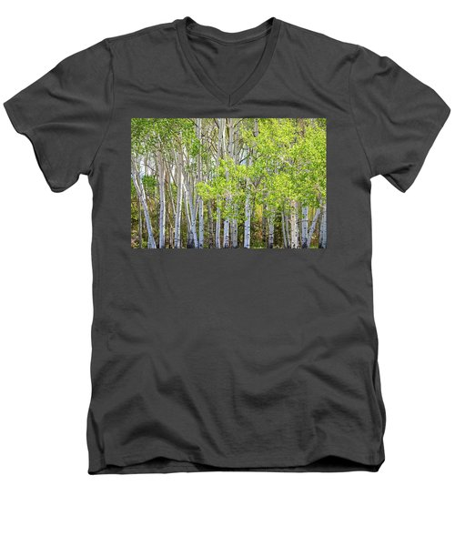 Getting Lost In The Wilderness Men's V-Neck T-Shirt by James BO Insogna