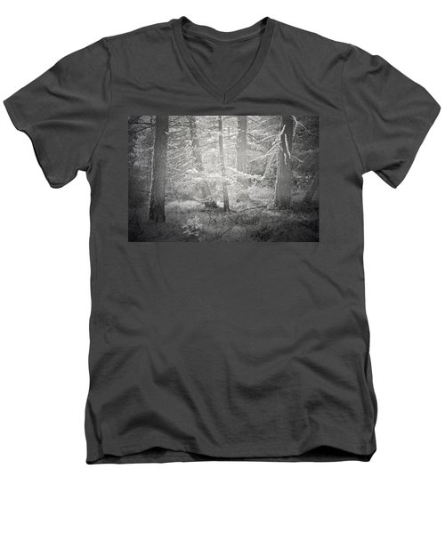 Men's V-Neck T-Shirt featuring the photograph Ghosts Of The Forest 3 by Tara Turner