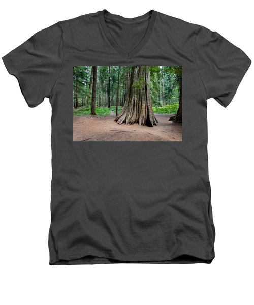 Men's V-Neck T-Shirt featuring the photograph Giant Cedar by Fran Riley