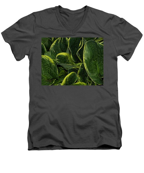 Giant Hosta Closeup Men's V-Neck T-Shirt