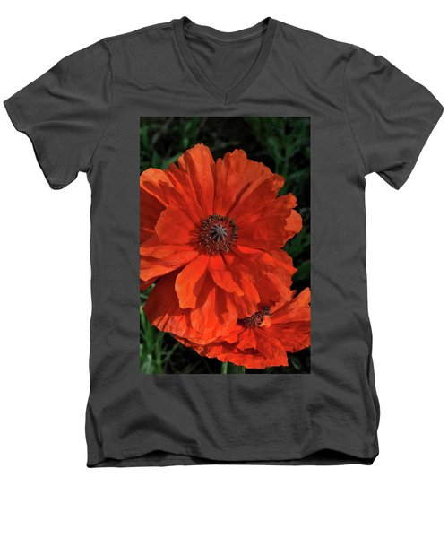 Giant Mountain Poppy Men's V-Neck T-Shirt