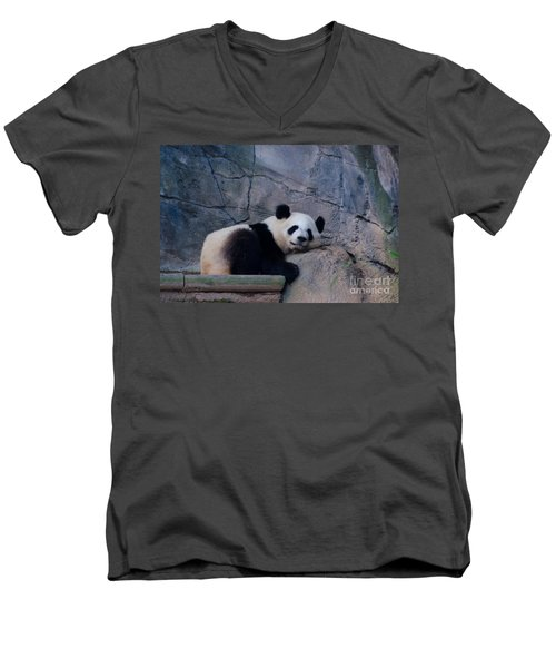 Giant Panda Men's V-Neck T-Shirt by Donna Brown