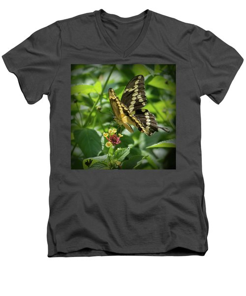 Giant Swallowtail On Lantana Men's V-Neck T-Shirt