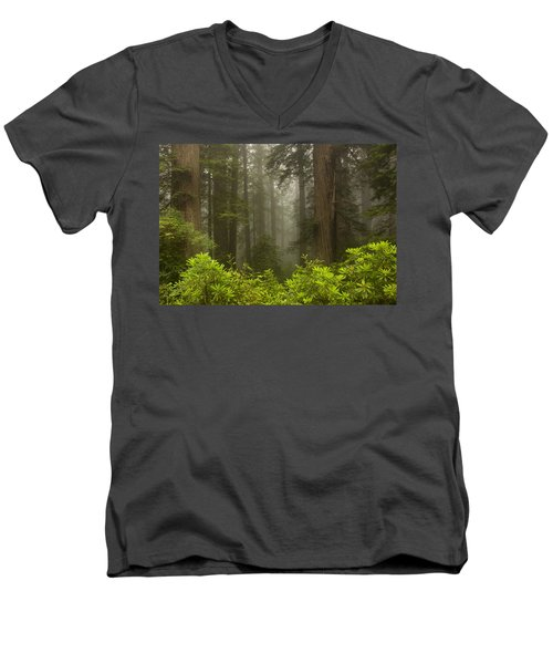 Giants In The Mist Men's V-Neck T-Shirt