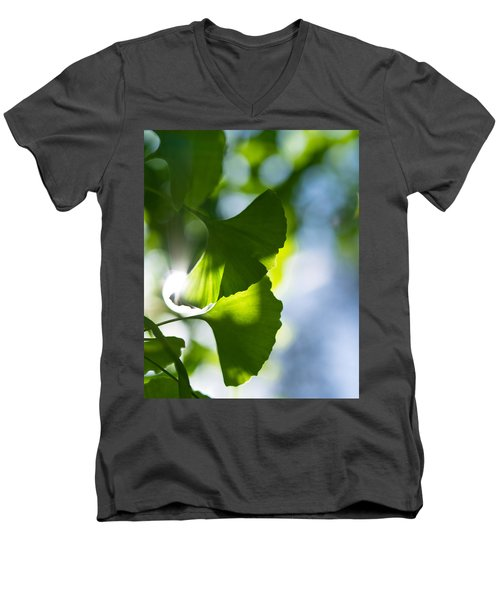 Gingko Leaves In The Sun Men's V-Neck T-Shirt