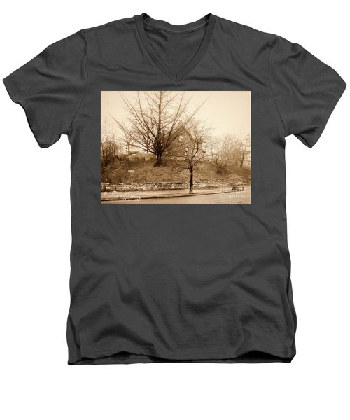 Ginkgo Tree, 1925 Men's V-Neck T-Shirt