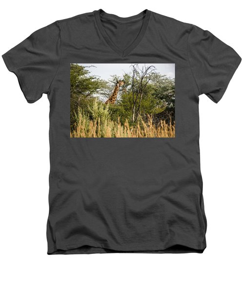Giraffe Browsing Men's V-Neck T-Shirt by Patrick Kain