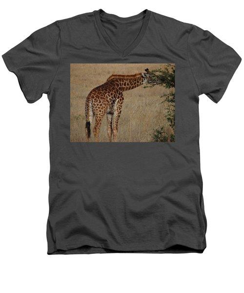 Giraffes Eating - Side View Men's V-Neck T-Shirt by Exploramum Exploramum