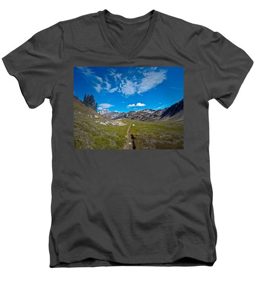 Glacier Wilderness Men's V-Neck T-Shirt