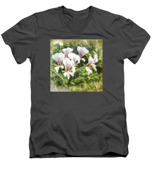 Gladiolus Callianthus Men's V-Neck T-Shirt