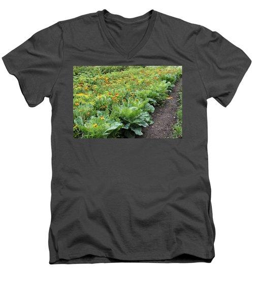 Glenveagh Castle Gardens 4276 Men's V-Neck T-Shirt