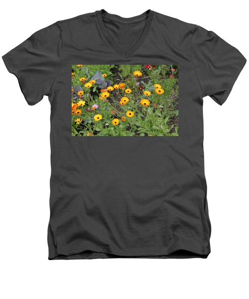 Glenveagh Castle Gardens 4279 Men's V-Neck T-Shirt