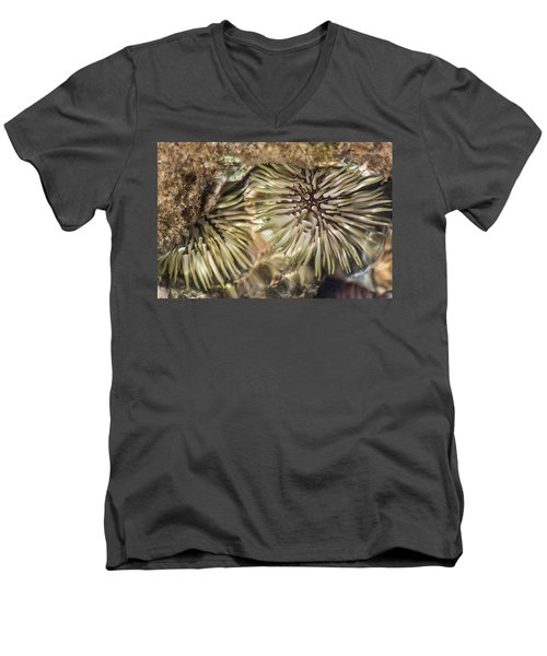 Men's V-Neck T-Shirt featuring the photograph Glistening by Colleen Coccia