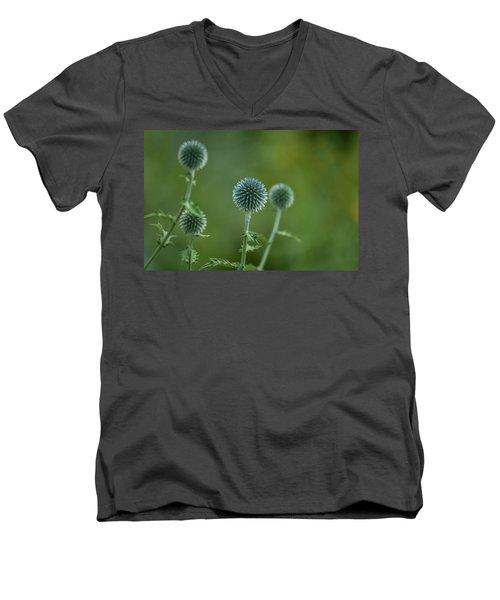 Globe Thistles Echinops Men's V-Neck T-Shirt