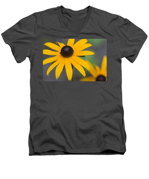 Gloriosa Daisies Men's V-Neck T-Shirt