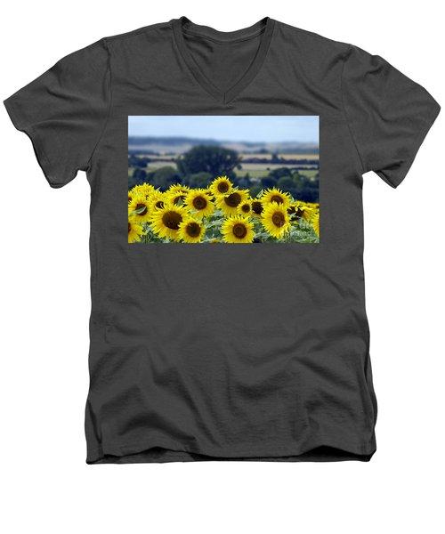 Glorious Sunflowers Men's V-Neck T-Shirt