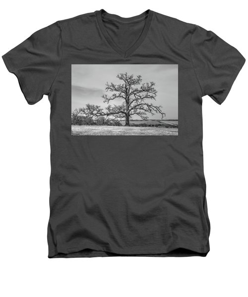 Gnarly Nature Men's V-Neck T-Shirt