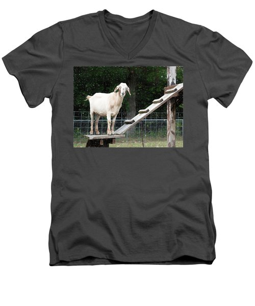 Goat Smile Men's V-Neck T-Shirt