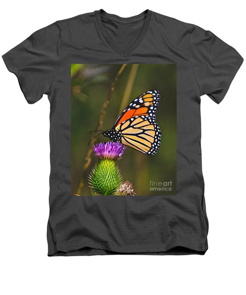 Gods Creation-16 Men's V-Neck T-Shirt