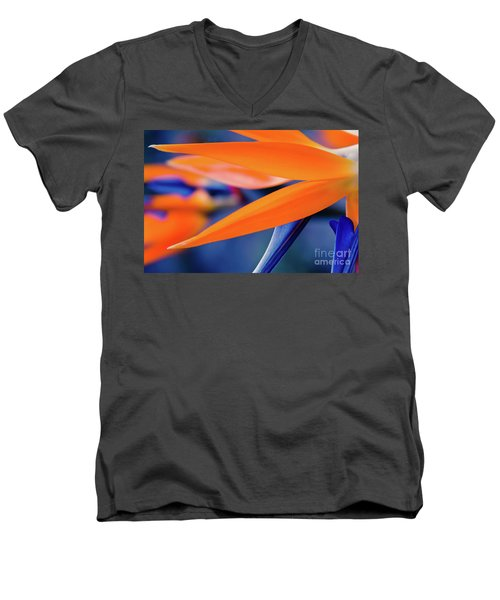 Men's V-Neck T-Shirt featuring the photograph Gods Garden by Sharon Mau