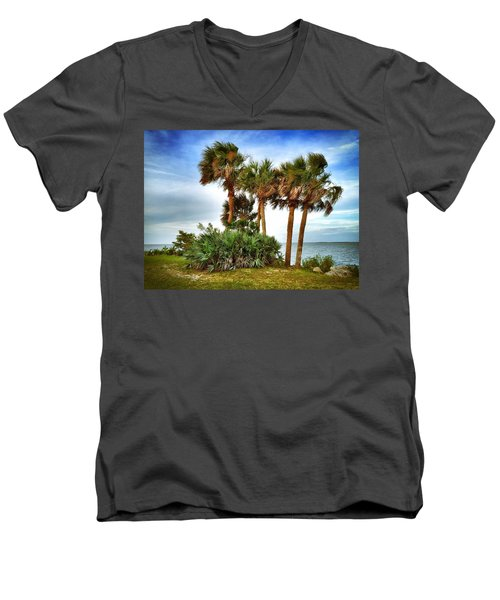 God's Nest Men's V-Neck T-Shirt by Carlos Avila