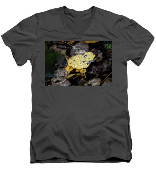 Men's V-Neck T-Shirt featuring the photograph Gold And Diamons by Stephen Holst