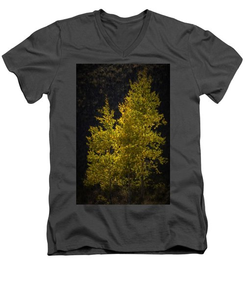 Golden Aspen Men's V-Neck T-Shirt