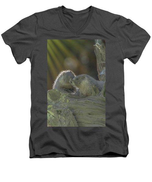 Golden Bellied Marmot Men's V-Neck T-Shirt