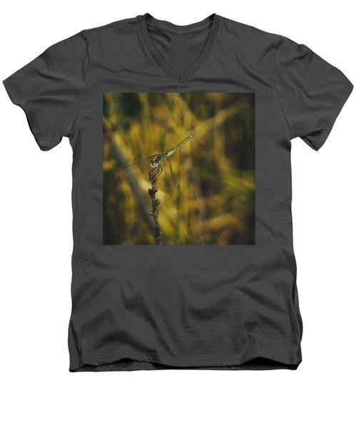 Golden Drangonfly Men's V-Neck T-Shirt by Cesare Bargiggia