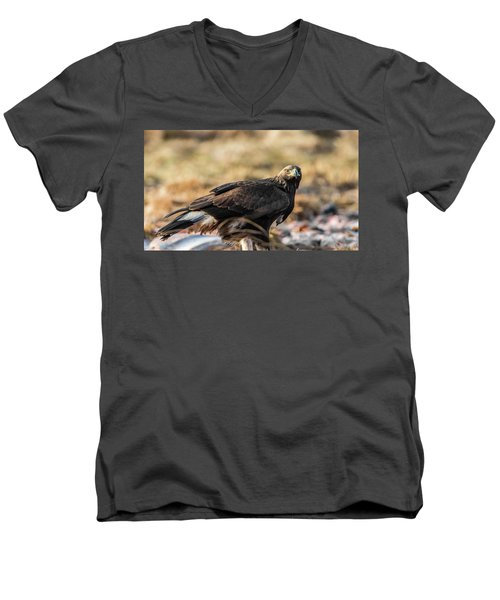 Men's V-Neck T-Shirt featuring the photograph Golden Eagle's Glance by Torbjorn Swenelius
