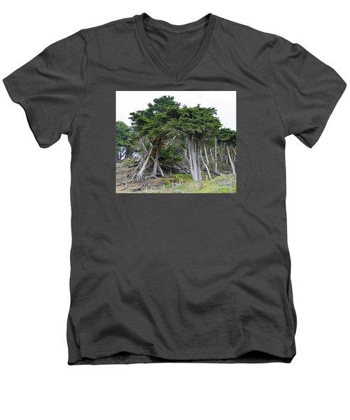 Golden Gate Sentinels Men's V-Neck T-Shirt