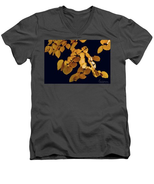 Golden Men's V-Neck T-Shirt