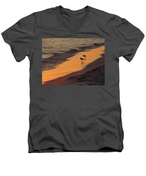 Golden Light At Sunset Men's V-Neck T-Shirt by Teresa Schomig