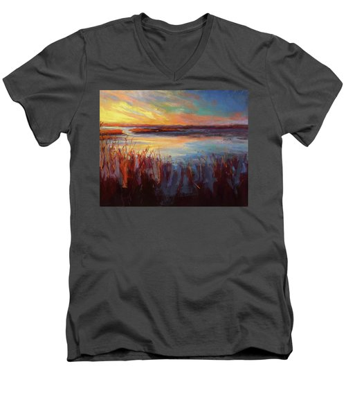 Golden Marsh Men's V-Neck T-Shirt
