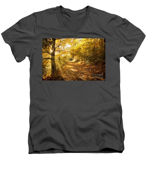 Golden Rays Of Autumn Men's V-Neck T-Shirt