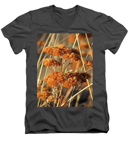 Golden Reach Men's V-Neck T-Shirt