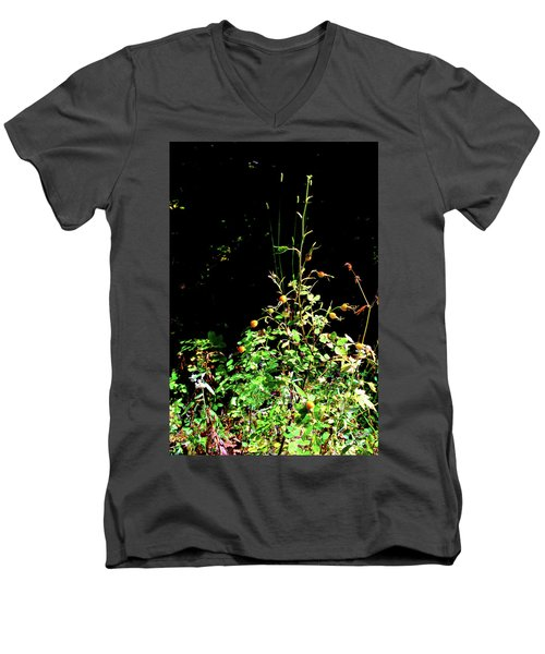 Golden Rose Hips Men's V-Neck T-Shirt