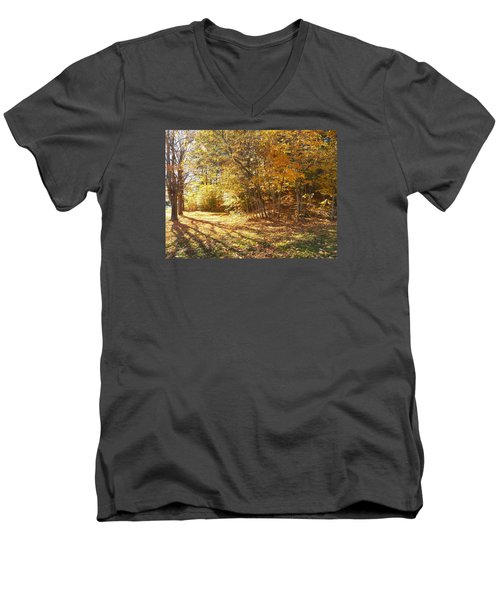 Golden Stairway Men's V-Neck T-Shirt