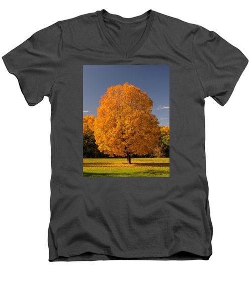 Men's V-Neck T-Shirt featuring the photograph Golden Tree Of Autumn by Gary Slawsky