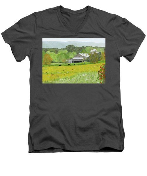 Goldenrod Abounds Men's V-Neck T-Shirt