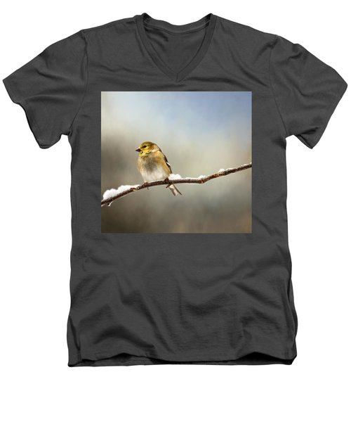 Goldfinch After A Spring Snow Storm Men's V-Neck T-Shirt by Betty Pauwels