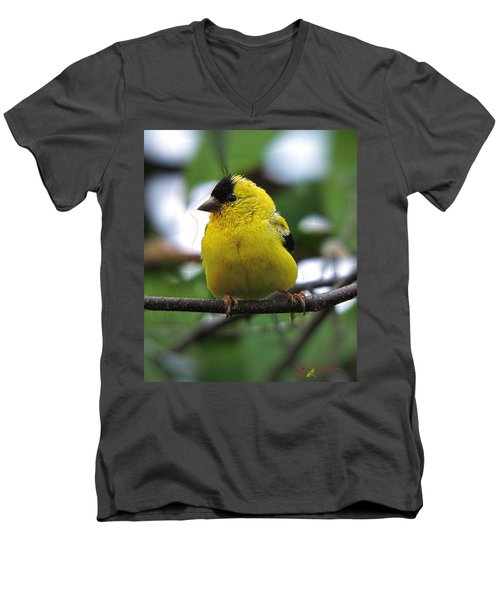 Men's V-Neck T-Shirt featuring the digital art Goldfinch by John Selmer Sr