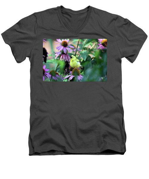 Goldfinch On Coneflowers Men's V-Neck T-Shirt