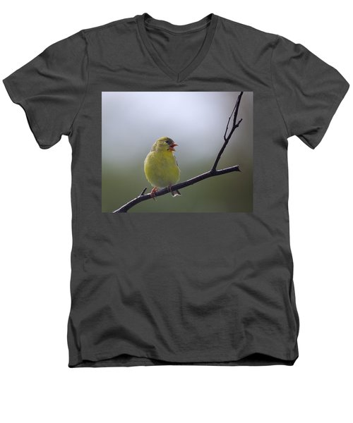 Men's V-Neck T-Shirt featuring the photograph Goldfinch Song by Susan Capuano