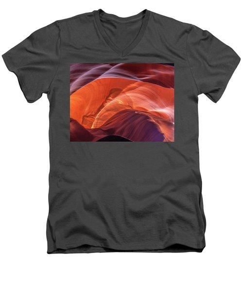Goose In Antelope Men's V-Neck T-Shirt