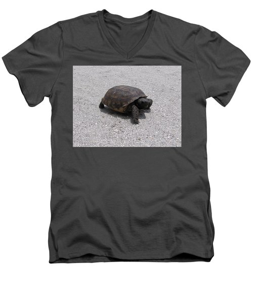 Gopher Tortoise  Men's V-Neck T-Shirt